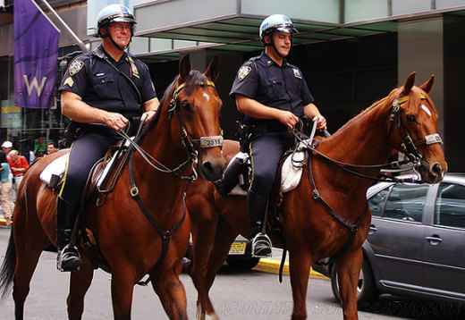 45379_police_on_horses_preview.jpg