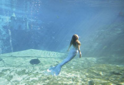 Mermaids forever - Others